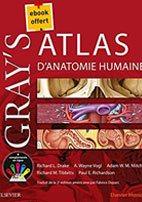meilleurs livres ECN Atlas Anatomie humaine